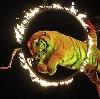 Цирки в Уссурийске